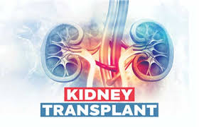 Kidney transplant, ANBIS INternational medical support services | Organ transplant services, kidney transplant services, Liver transplant services.