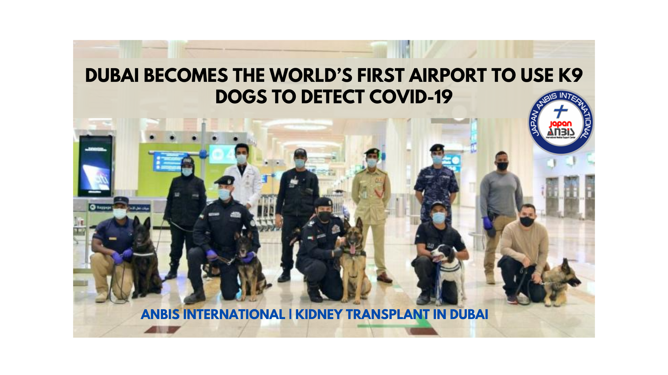 Dubai becomes the World's first airport to use K9 dogs to detect COVID-19 | ANBIS International